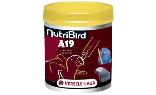 NUTRIBIRD A19 PAPEGAAI 800 GR